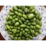10 Sementes De Mini Pepino Melothria