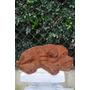 Escultura Cachorro De Ferro Fundido 9 Cm - Erf174