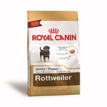 Ração Royal Canin Rottweiler Junior Cães 12kg + Frete Gratis
