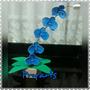 Arranjo De Orquídeas Em Eva