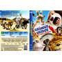 Dvd Animais Unidos - Jamais Serão Vencidos, Original