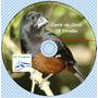 Cd Canto Curió 15 Viradas -original P/ Aves Em Gaiola