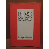 Livro Pedro Bruxo Henrique Schneider