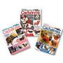 Lote De 3 Revistas Moda Pet Tecido Roupa Cães Corte Costura