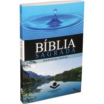 Kit C/ 10 Bíblias Sagrada Brochura P/ Evangelismo
