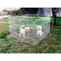 Cercado Canil Médio Para Cachorro ,coelho ,gato ,pet ,cão