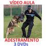 Pitbull!!! Para Todas As Raças, Adestramento De Cães 3 Dvds