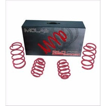 Molas Esportivas Red Coil Polo Fox Spacefox