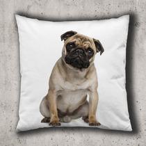 Almofada 40x40cm - Cachorro Pug Sentado Ii - Com Enchimento