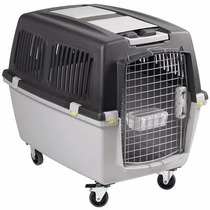 Caixa Transporte N4 Gulliver Cão Cachorro Gato Iata