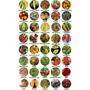 Kit 5 Variedades Sementes De Pimentas Rara Escolha Entre 40