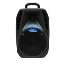 Caixa De Som Passiva Profissional. Acústica, 100w. Portátil