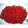 500 Sementes Vermelhas De Pau Brasil