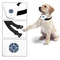 Coleira Antilatido Ultrassônica - Anti Barking