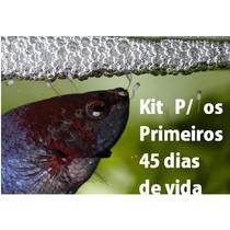 Artemia + Micro Vermes + Farinha De Minhoca Alevinos Bettas
