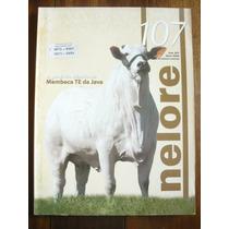 Promoção Revista Nelore 107 Ano 2004 - Cod.p1210225
