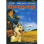 Dvd - Rin-tin-tin - Vol. 1 - 3 Episódios Inéditos