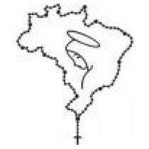 Emblema Adesivo Brasil Santinha Aplicação Universal