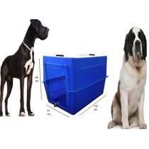 Caixas De Transportes Ideal Para Dog Alemão E São Bernado