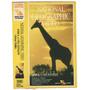Vhs National Geografic Africa A Vida Selvagem /orig/ Usado