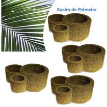 Kit 12 Vasos Para Orquídea Xaxim De Palmeira Ecológico