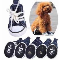 Sapato Botinha Cachorro Antiderrapante Impermeável P M G