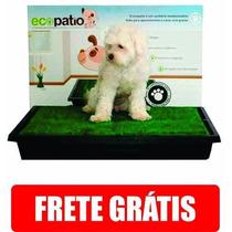 Sanitario Canino P/ Cães Grama Ecopatio Pet Park +barato!