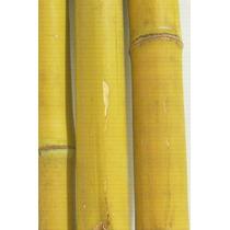 Vara Bambu Natural Para Artesanato/decoração 1 Metro