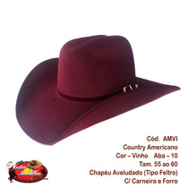 Chapéu Cowboy Ou Country Masculino E Feminino ( Rodeio)