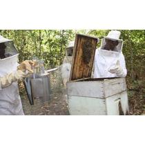Macacão Apicultor Com Luvas E Fumigador - Frete Grátis