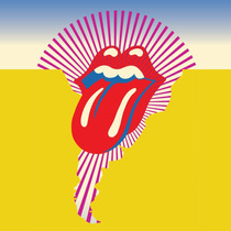 Ingresso Vip Hot Package Show Rolling Stones S.paulo 27-fev