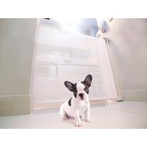 Portão Proteção Retrátil Para Cães Kinder Protector