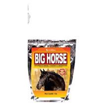Big Horse Suplemento Para Cavalos,muares Asinino 1kg Vetbrás