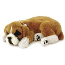 Cachorro Boxer Que Respira Perfect Petzzz Pelúcia