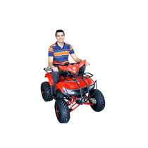 Quadriciclo 125cc Bz Áquila - Automático Com Ré E Setas