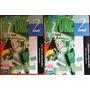 In Tune 2 (2 Livros + 2 Cd´s) - Ana Maria Cristina Cuder
