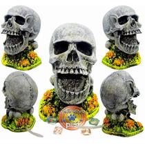 Enfeite Para Aquário De Resina Oxigenador Cranio Móvel Pm11