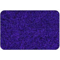 Glitter Purpurina Em Pó Violeta - 500 Gramas