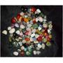 Pedras Naturais Varios Tipos