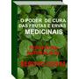 Poder De Cura Das Frutas E Ervas Medicinais