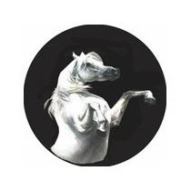 Capa Estepe Universal 15/ - Cavalo - Freire