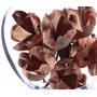 Rosa Tefe 1 Pacote Com 12 Und. Arranjos,flores Desidratadas