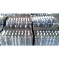 Embalagem Para Ovos De Codorna _ Super Promoção 100 Unidades