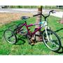 Bicicleta Triciclo Adulto Aro 26 Aço Carbono