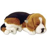 Filhote-Perfect-Petzzz-Cachorro-Beagle-Que-Respira