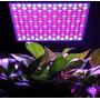 Painel Led Grow 14w Full Spectrum Hidroponia Cultivo Indoor