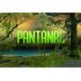 Novela Pantanal Completa Em 50 Dvds - Frete Grátis