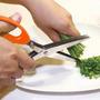 Tesoura Para Cortar Temperos Ervas Legumes Salada 5 Lâminas