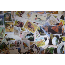 Lote Com 300 Selos Comemorativos Do Tema Fauna