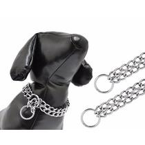 Colar Enforcador Elo Duplo Para Cães Cachorros Tam 09